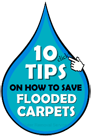 10 Tips To Save Flooded Carpets